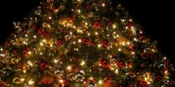 Gig Harbor Events, Christmas, Tree, downtown, celebration, park, December,