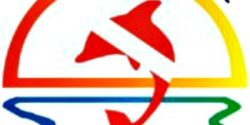 Hula Kai Adventures, Diving, Jim Gunderson, Puget Sound, wetsuite, Scuba, Tanks, dive, water, Puget Sound, shore, underwater, sport, regulator, adventure, fish, diver, lessons, teaching, dive master, open water diver, dive instruction, Gig Harbor, Attraction