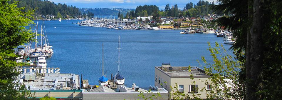 Harbor Overlook