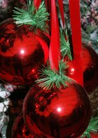 Christmas, venues, holiday, rental, parties, events, Gig Harbor, wedding, rooms for rent, facilities, locations, gatherings.