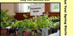 Plant Sale, Fox Island, Nichols Center, Rental, Venue, weddings, Community. Parties, For Rent