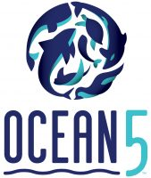 Ocean5, Venue, Meeting Space, Party, wedding, restaurant, food, bar, Organic, coffee, duckpin, bowling, arcade, meeting space, farms, worms, sustainable, event, venue, Table 47, Ocean, beverage