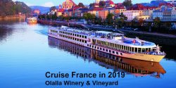 Viking River Cruise, Crise Planners, Tony DeMarco, Bourdeaux, France, Cruise Planners