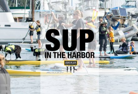 Stand Up Paddle Boarding Parade on the Water @ Skansie Brothers Park | Gig Harbor | Washington | United States