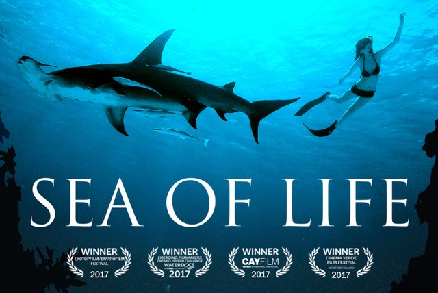 Meaningful Movie, Sea of Life, Gig Harbor Events, Movie, Lecture, informational, planet